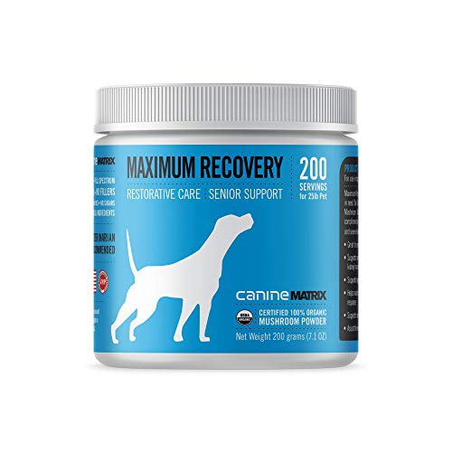 Top 10 best selling list for recovery joint supplement for dogs