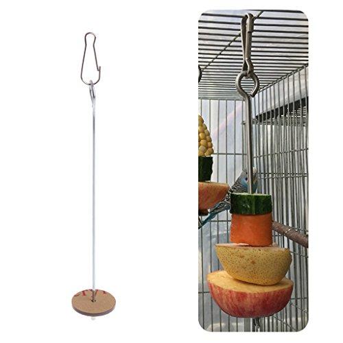 Haven shop Obstspieß für Obst und Gemüse, zum Aufhängen, aus Edelstahl, für Obst und Speer