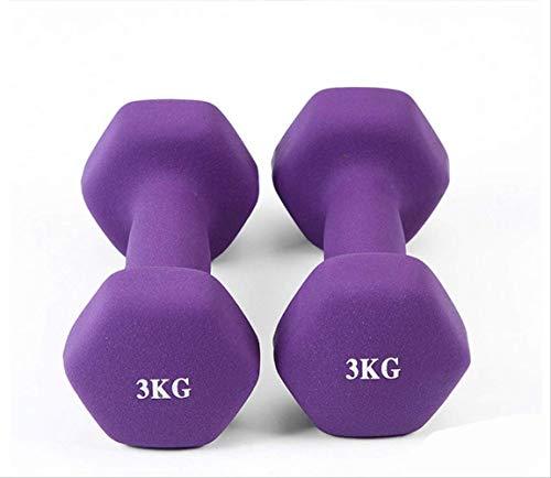 wolong 1 kg x 2 Stück Damen Hantel Übung Yoga Tauchen Übung Hantel Kunststoff Aerobic Tanz Fitnessgeräte 3 kg 1 STK. Lila