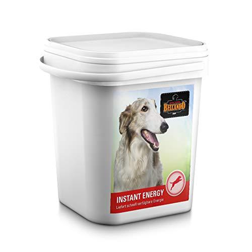 Belcando Instant Energy [3 kg] | Energieversorgung für Hunde in Wettkampfbedingungen | Ergänzungsfutter für Hunde