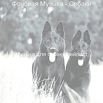 Фоновая Музыка - Собаки