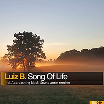 Song Of Life