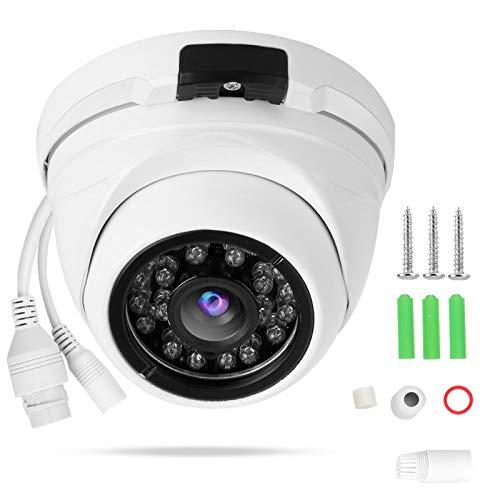 Cámara IP 1080P Ip66 Carcasa de Metal Impermeable con 24 LED Infrarrojos Cámara Domo IR Adecuado para Interiores y Exteriores Adecuado para monitoreo Remoto