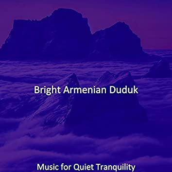 Music for Quiet Tranquility