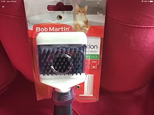 Bob Martin Brosse pour Chat
