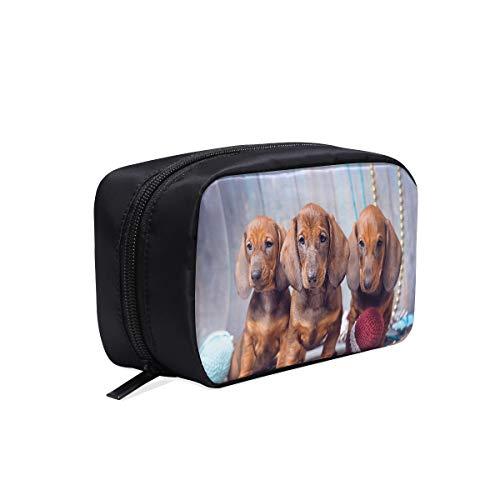 Designer Cosmetic Bag Trois Dachshund Puppy Décoration de Noël Look Coloré Sacs à cosmétiques Sac de maquillage pour homme Womans Voyage Trousse de toilette Sacs à cosmétiques Multifonction Etui à ma