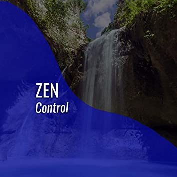 # Zen Control