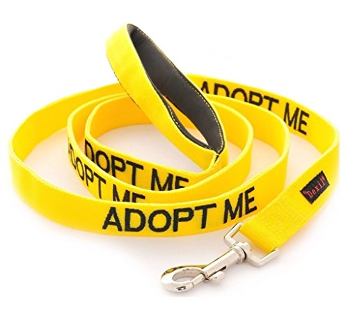Dexil Limited Adopt ME Yellow Color Coded 2 4 6 Foot Padded Dog Leash (New Home Needed) Donate to Your Local Charity (6 Foot Leash)
