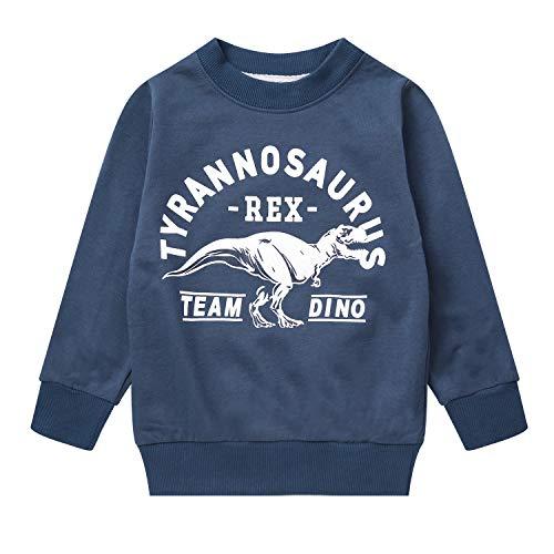 Boy Dinosaur Sweatshirts Toddler Long Sleeve Cotton Pullover Cartoon T-Shirts Sport Top Tee For Kids 2-7T dinosaur3-8009-4T