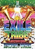 EXILE TRIBE LIVE TOUR 2012 TOWER OF WISH(2枚組)[DVD]