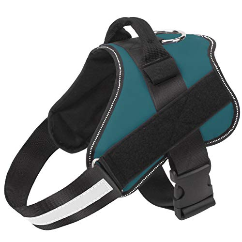 Bolux Dog Harness, No-Pull Reflective Dog Vest, Breathable Adjustable Pet Harness with Handle for Outdoor Walking - No More Pulling, Tugging or Choking ( Turquoise, M )