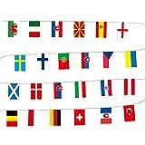 YSINOBEAR Banderas de la Copa de Campeones de Europa, banderas nacionales de los 24 equipos participantes en Europa, apertura y decoraciones festivas para eventos, 25 pulgadas(24 banderas*5 unidad)