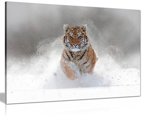 Panther Print Kunstdruck auf Leinwand, Motiv Sibirischer Tiger im Schnee, 76,2 x 50,8 cm