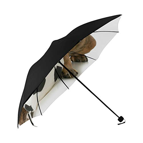 Waterproof Compact Umbrella Dog Puppy With Soccer Ball Underside Printing Compact Umbrella Golf Best Travel Umbrella With 95 Uv Protection For Women Men Lady Girl