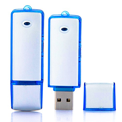 Pleson 8 GB Grabadora de Voz USB Flash
