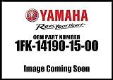 Yamaha 1fk-14190–15–00–Válvula de aguja ASY; 1fk141901500