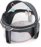 Best Infant To Toddler Rockers - Fisher-Price On-The-Go Baby Dome - Pink Pacific Pebble Review
