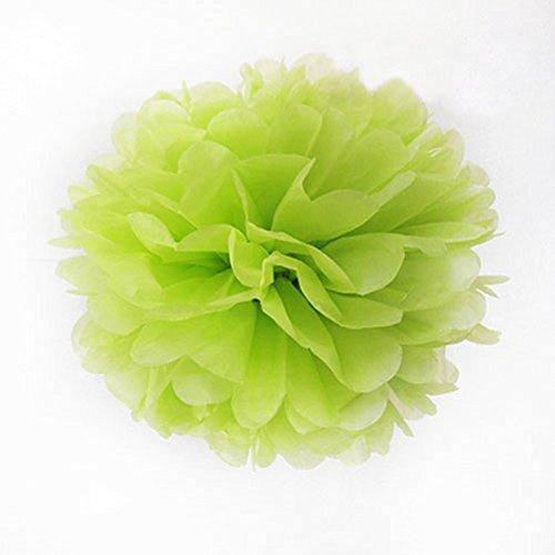 10 pcs 25,4 cm papier de soie pompons fête de mariage Decor Craft Fleurs en papier pour fête de mariage 10 Inch Green