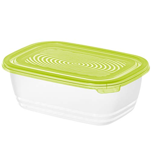 Rotho Sunshine Frischhaltedose 1l mit Deckel, Kunststoff (PP) BPA-frei, grün, 1l (19,5 x 13,5 x 7,0 cm)