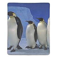 マウスパッド ノートブック デスクトップ コンピューター アクセサリー ミニ オフィス用品 マウスマット皇帝ペンギンアイスブルースカイ南極大陸