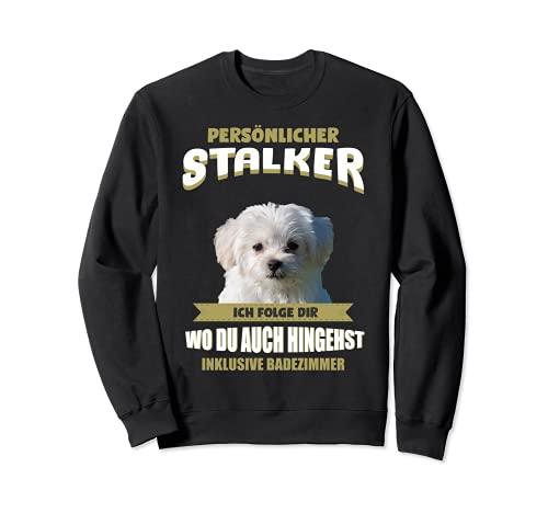 Malteser Hund - Malteser Sweatshirt