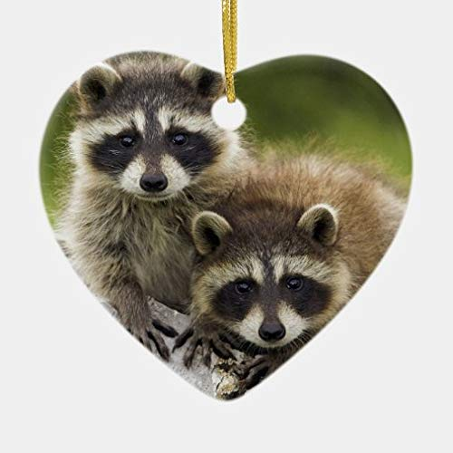 onepicebest Christmas Heart Ornaments The Raccoon Couple Ceramic Ornament Xmas Gifts Presents, Holiday Tree Decoration Stocking Stuffer Gift