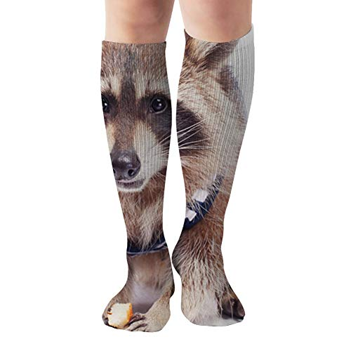 Raccoon Dressed Sailors Vest Cute Fluffy Compression Socks Women & Men, Best Athletic & Medical Running Flight Travel Pregnant 19.68 Inch