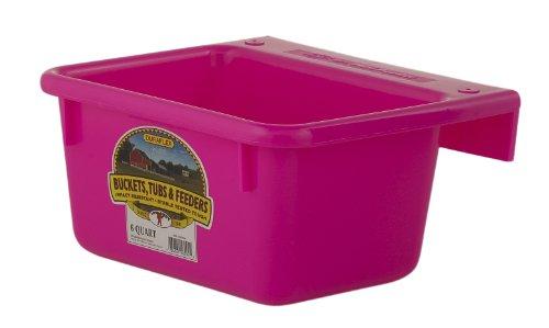 Little Giant Plastic Mini Feeder (Hot Pink) Durable & Mountable Plastic Feed Bucket for Livestock & Pets (6 Quart) (Item No. MF6HOTPINK)