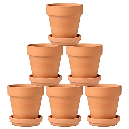 Briful 6 Pcs Small Terracotta Pot 5.1'x5.1' Flower Pots Clay Ceramic Pottery Planter with Saucer and Drainage Hole Cactus Succulent Nursery Pots- Great for Plants,Crafts,Wedding Favor