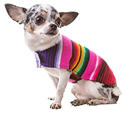 Beste Chihuahua-Kleidung, um Ihren kleinen Welpen im Winter warm zu halten