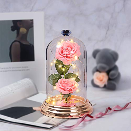 Shirylzee - Rosa eterna de cúpula con luz LED, bonita lámpara de cloche de cristal con caja de regalo, decoración para el día de la madre, San Valentín, aniversario (rosa)
