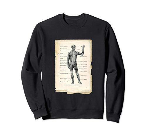 Vintage Anterior Anatomy Book Page Sweatshirt