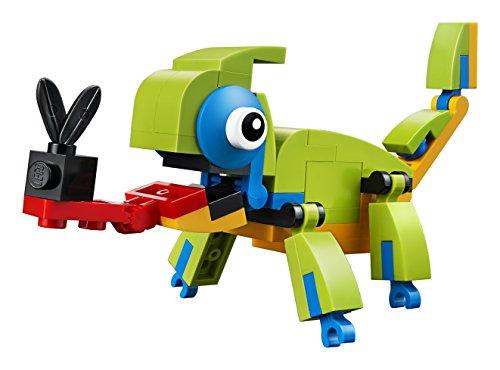 LEGO 30477, Mehrfarbig