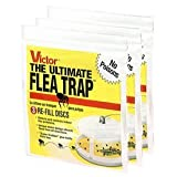 Victor 1 M231 Flea Trap Packs of 3 (9 Refills Total) Includes t, 3.5 x 19 x 19 inches, Yellow