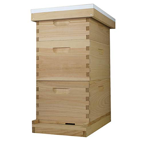 Amish Made in USA Complete 8 Frame Langstroth Bee Hive includes Frames and Foundations (2 Deep, 1 Medium)