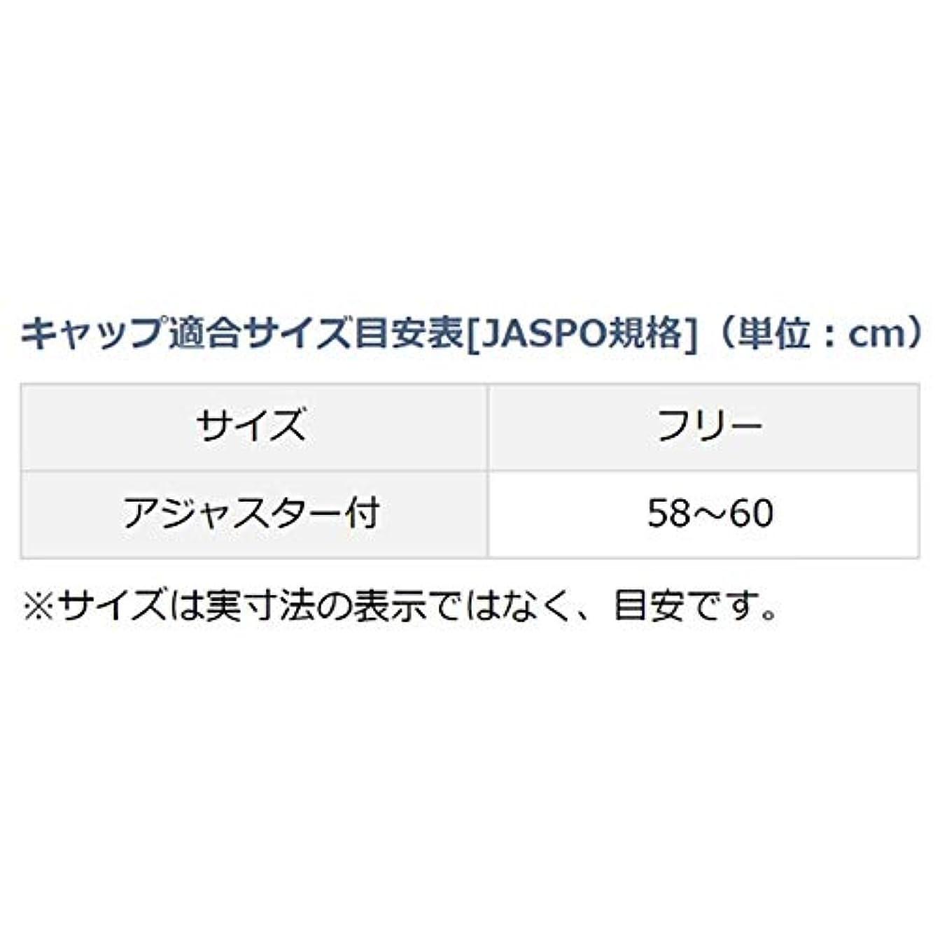 連結するお手伝いさん広々としたダイワ(DAIWA) ゴアテックス ロゴキャップ DC-16009