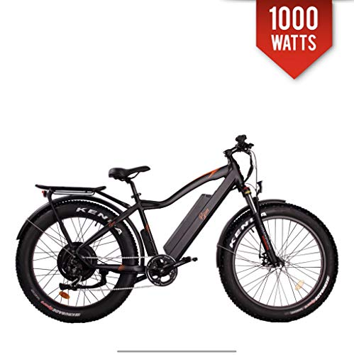 Bpm F-95 Fat Bike Electric