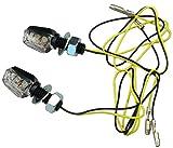 IGUANA CUSTOM PARTS - Intermitentes de moto homologados TINY negros lente transparente con 6 LEDs de alta luminosidad, muy pequeños y muy visibles! Pack de 2 unidades.