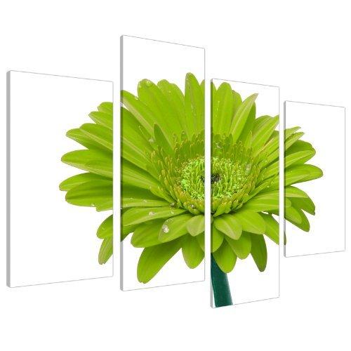 Wallfillers Cuadros en Lienzo Grande Margarita Grande Verde Lima. Imágenes artísticas para Pared XL 4098