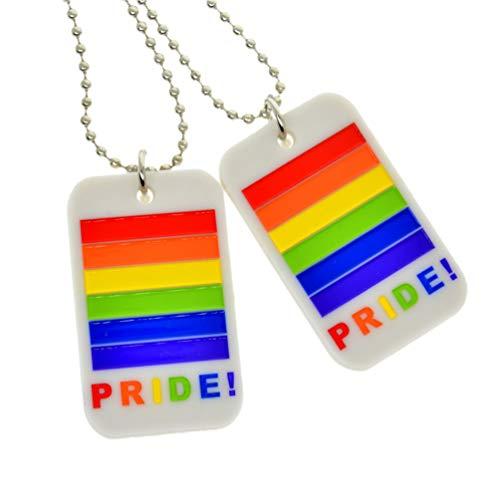NUOBESTY 2 Piezas Orgullo Arco Iris Collar Llavero LGBT Llavero Colgante Clave Fiesta Gay favorece joyería Lesbiana Regalo para Hombres Mujeres (Gris)
