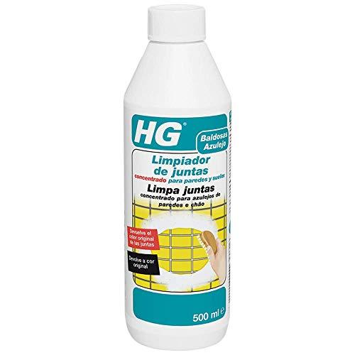 HG 135050130 Limpiador Juntas Suelos-Paredes