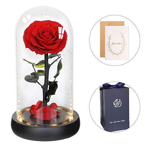 Anaoo Rosa Bella y Bestia Flores Preservadas Rosa eterna en cúpula Regalos para San Valentin Madres Novia cumpleaños Navidad Esposa Boda, con Caja de Regalo y Tarjeta de Deseos