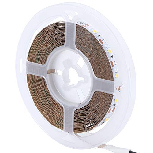 Cinta de luz LED, bajo Consumo de energía 16.4 pies Tira de luz de Colores cálidos Alto Brillo para Esquinas para letreros para TV Fondo para Espacios para Aleros para Pared