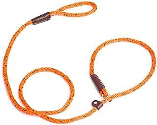 Best cesar millan training collar Reviews