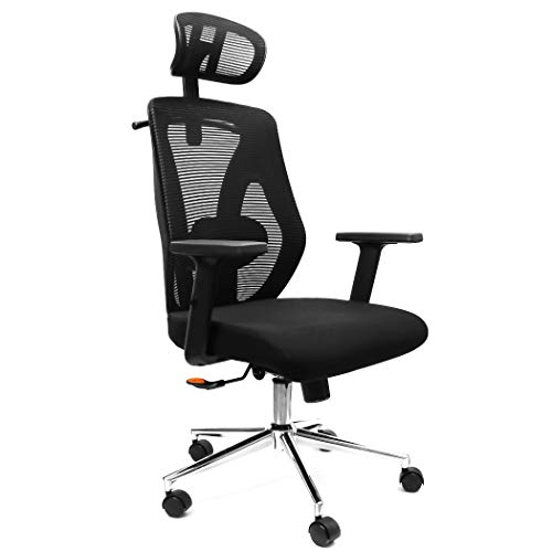 Lavievert Ergonomic Adjustable Office Chair Desk Chair Computer Chair with Lumbar Support and Adjustable Headrest & Armrest High Back with Breathable Mesh