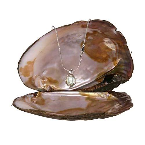 TotalCadeau - Collana fantasia con perla vera in ostrica, ciondolo a gabbia, gioiello economico