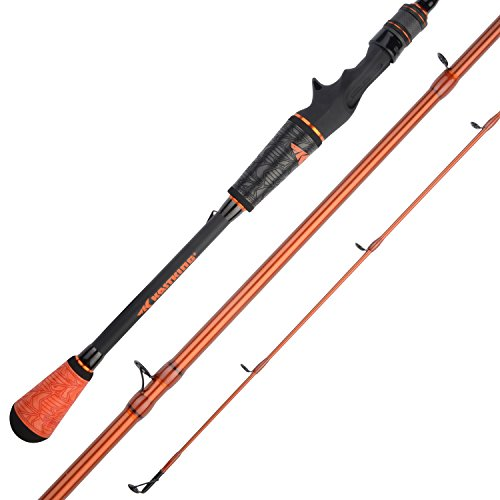 KastKing Speed Demon Pro Bass Fishing Rods, Casting Rod-Jerk Bait-6ft 10in Medium - Fast