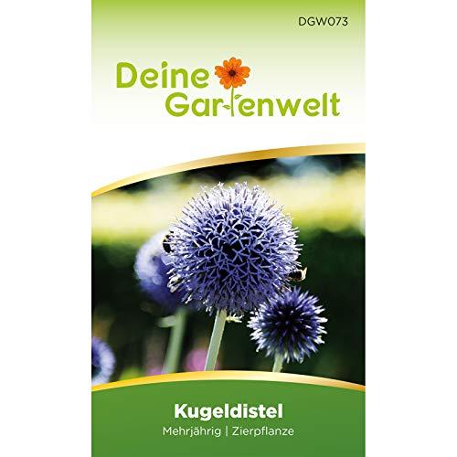 Kugeldistel Samen | Distelsamen Saatgut für Echinops ritroca | Blumensamen mehrjährig