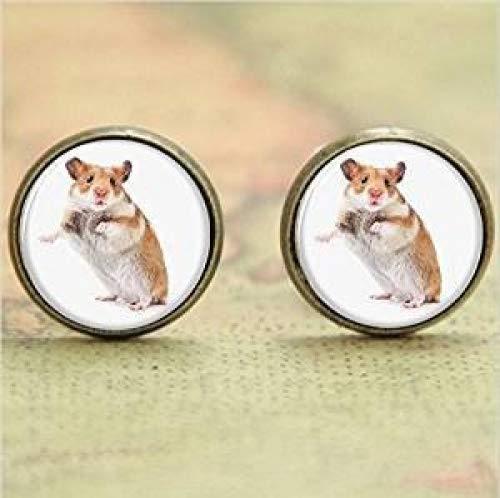Hamster Ohrring, eine kleine Tier, der ist ähnlich einer Maus Glas Foto Pet Ohrring