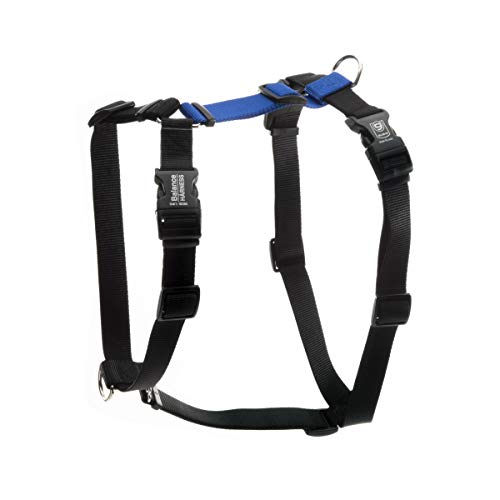 Blue-9 Pet Products Buckle-Neck Balance Harness, 6-Point Adjustable No-Pull Harness, Ideal for Dog Training, Made in The USA, Blue, Medium/Large